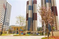 民间交流学习!看看邻居东莞的公租房,有儿童活动中心、篮球场!-咚咚地产头条