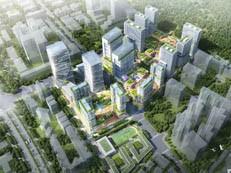 定了!招商蛇口为申报主体,宝安铁仔山城市更新项目又有新进展!-咚咚地产头条