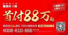 央视点名、停止过户、查封门店…深圳小产权被禁后,热钱流向何方