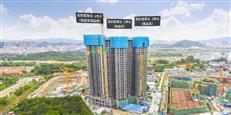 均价2万深圳买房!22762户家庭认购,已整理选房预判和常见问题