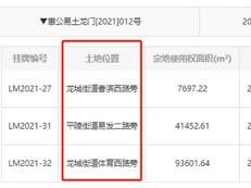 起拍价4.4亿,限售价9050元/平!惠州龙门再挂牌14.3万商住地