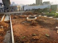 海月花园二期